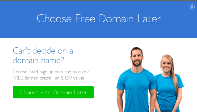 choose free domain later bluehost