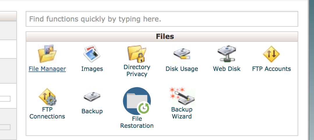 File Manager option cPanel