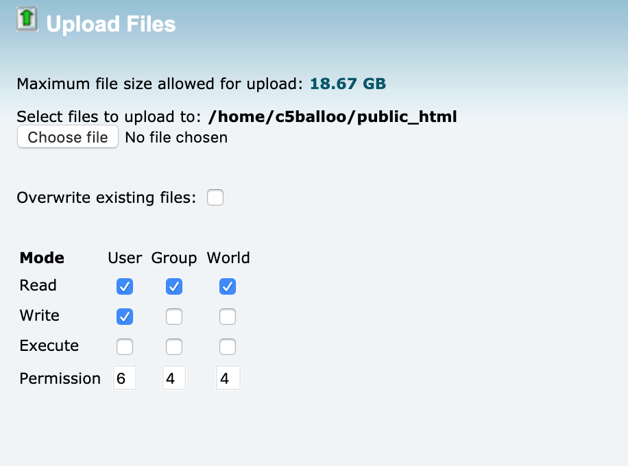 upload file cPanel WordPress