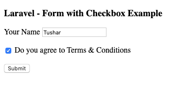 single checkbox form laravel