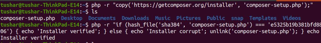 php download composer file